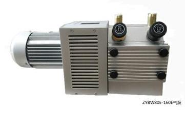 ZYBW...E型真空压力复合泵