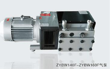 ZYBW...F型真空压力复合泵
